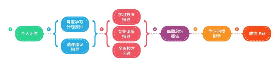 全程学术辅导-流程图